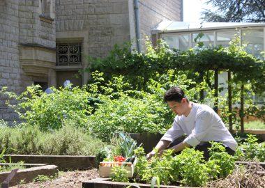 Etudier et vivre sur un campus éco-responsable